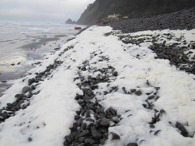 Mile 307 sea foam