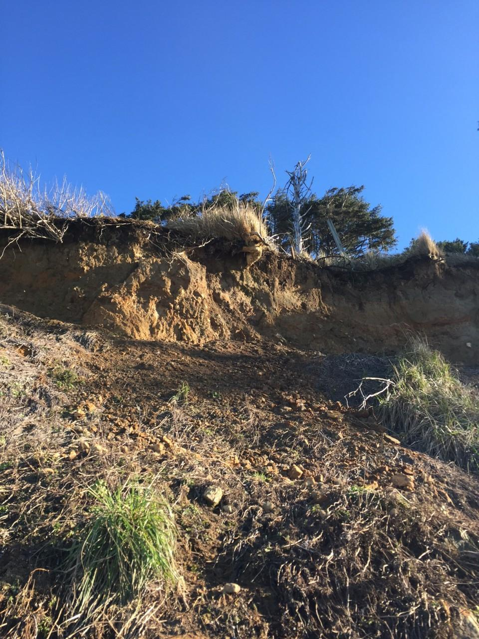 slide between properties of Grewe and Auel about 150 ft wide, exposing roots, vegetation slipped down to the beach.