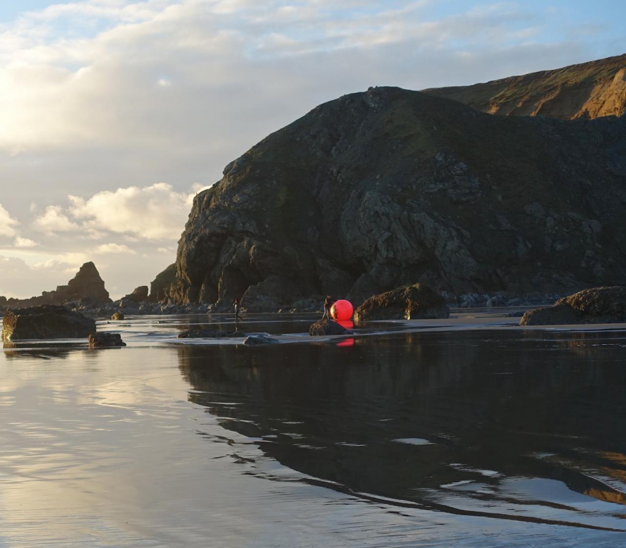 5-ft buoy washed ashore