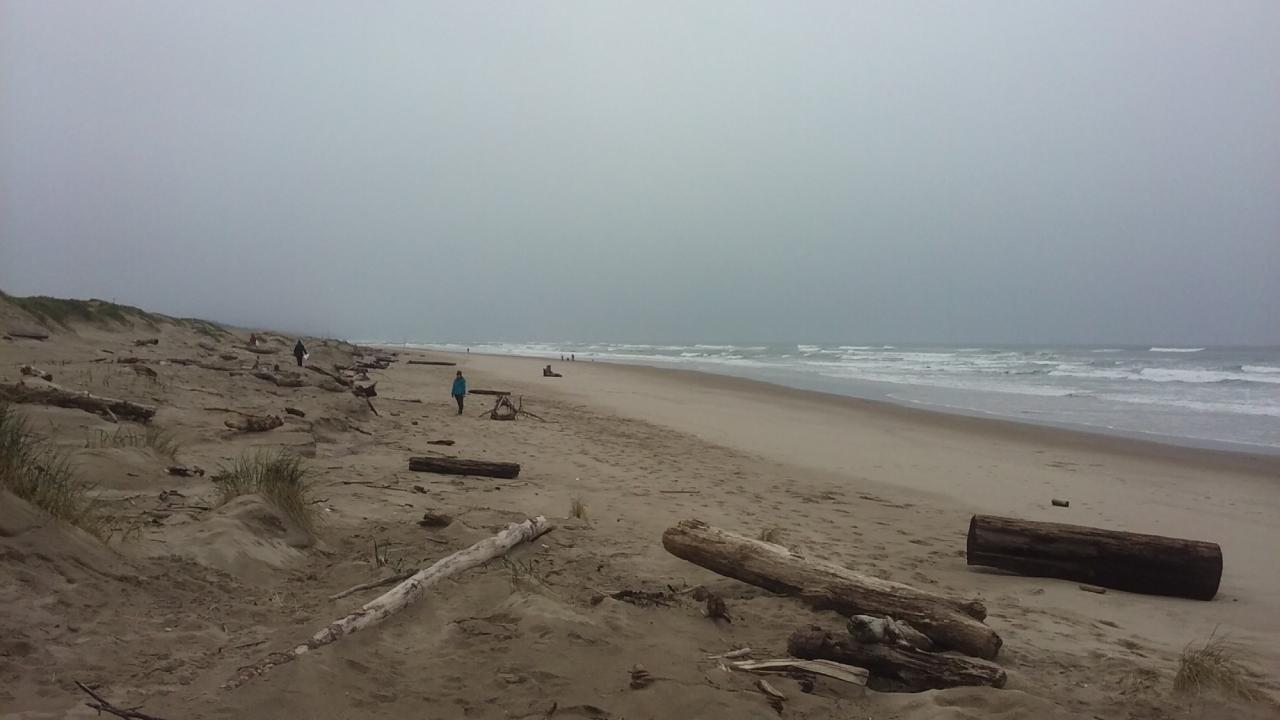 It was a cloudy, overcast day during our cleanup on the Bayshore, North Alsea River Spit, OR.