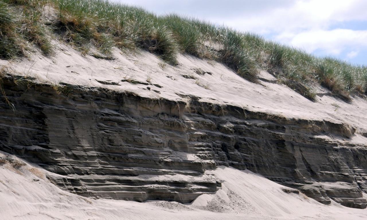Erosion in sand dune