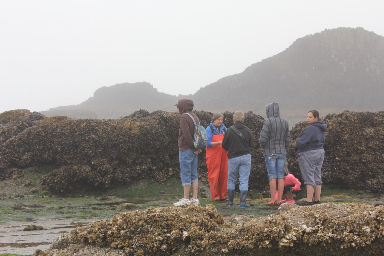 Tidepools with Fawn Custer