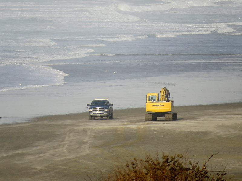 Excavator on Nye Beach