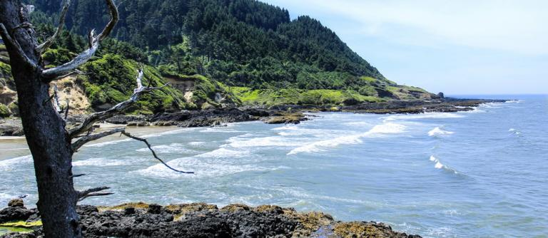 Cape Cove, site of the marine debris survey.\Photo by Bonnie Moreland.