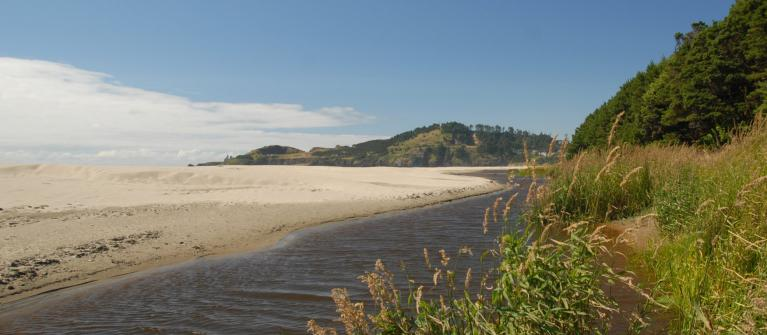 Agate Beach State Park in Oregon.