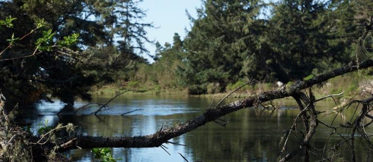 Siltcoos Lake.
