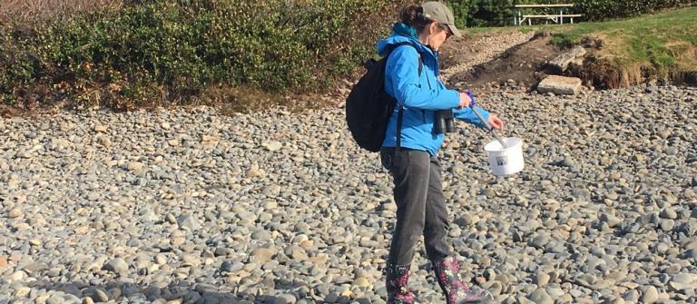 Conducting marine debris survey and cleanup at Muriel O. Ponsler wayside.\Photo by Tara Dubois.