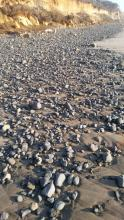 Rocks near shoreline, facing south mile 209