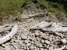 Driftwood re-arrangement