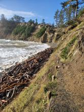 Most of access trail not impacted