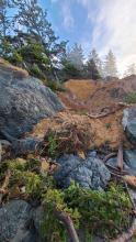New Landslide
