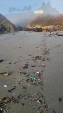 plastic bits in the drift line