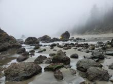 Foggy day at low tide - Battle Rock Beach