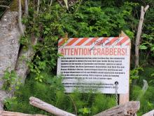 attention crabbers