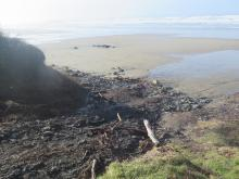 Debris at foot path onto beach