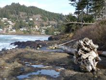 Looking north across river along Yachats Ocean Road
