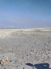 Sand ridges Muriel Ponsler