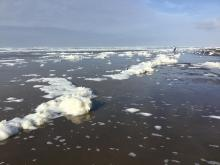 Sea foam or icebergs?