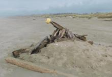 Bayshore Beach Howitzer