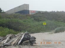 Driftwood Beach looking towards Driftwood wayside parking lot