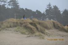 Dune Surfing with Sled