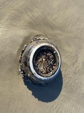 Washed ashore tire