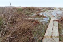 Flooding Sandpiper Shores entrance boardwalk