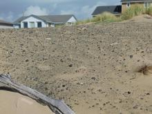 Dumping of gravel/rock and roofing material on dunes