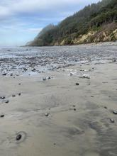 Rock field at north end of beach