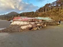 tsunami boat on Arcadia Beach