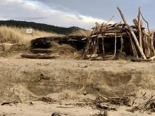 Driftwood fort built atop the dunes' sharp 3' vertical edge