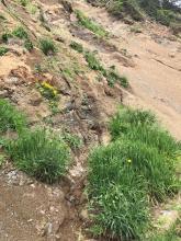 small drainage
