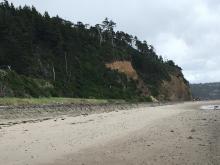 Sand Shelf