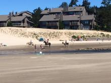 Dune Stabilization project at Breaker's Pt Condo/Ecola Creek.
