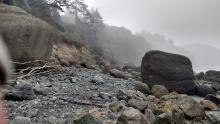 Massive beach boulders