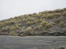 Dune erosion.