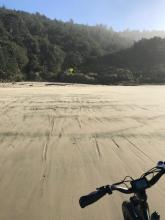 Log tracks