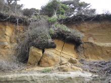 Current cliff erosion.