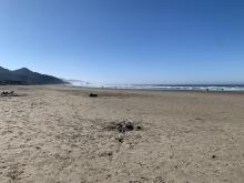 Cannon Beach, looking south towards Tolovana