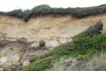 defaced cliff face Ona Beach