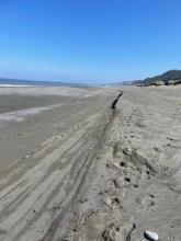 Beach change