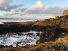 North Cape Perpetua area, looking north during low tide.