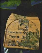 Permit # 96011, Tier # 300, Tag # 047, 2006-07 Season