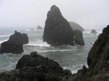 The ocean was quite rough today, swirling around the off-shore rocks.