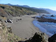The beach is relatively free of algae and kelp today.