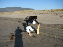 "My daughter Natanya picking up a large foam ""log"".  Also note the SOLV bag, partially full, and the balloon, also found on the beach.  We also had another full SOLV bag with debris, mostly bottles, styrofoam, and rope/string of various kinds."
