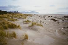 This view is toward the south from within the dunes.  The tide is very low (-.2).