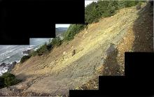 Photo shows extent of landslide of 2 - 3 years ago.