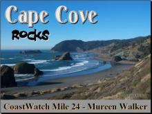 Power Point Presentation explores the rocks, soils and seastacks of Cape Cove at the base of Cape Sebastian. (80+ photo/slides)