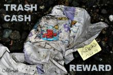 "To be or not to be a co-dependent for a litterer?How about offering a reward of ""Trash Cash"" sponsored by businesses and individuals with online details."